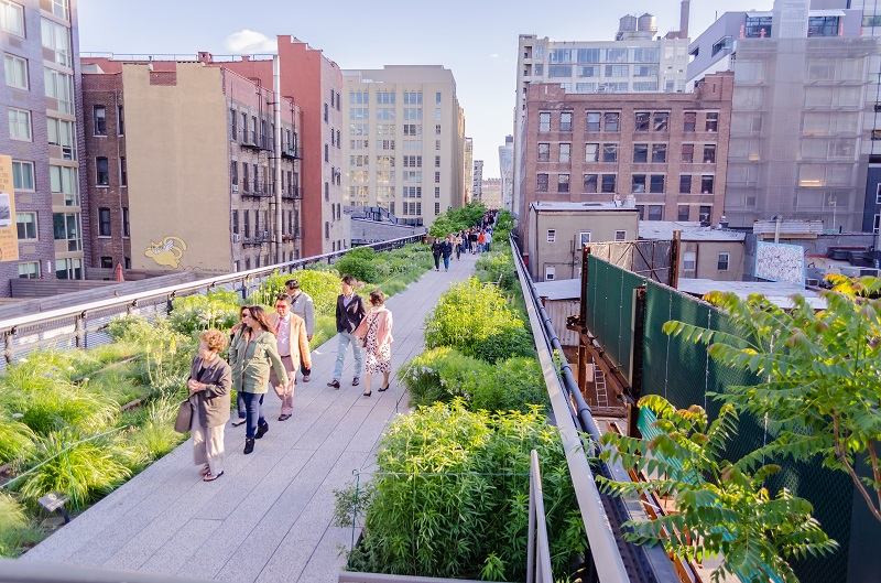 New York's High Line Photo: Marco Rubino/Shutterstock